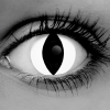 White Cat Eye Contacts - Vampfangs - GOTHIKA - do cat eye contacts rotate?